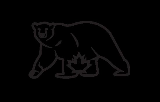 polar_piece_logo
